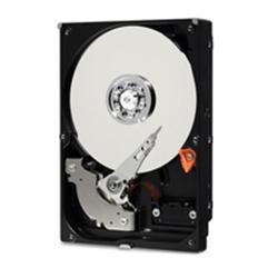 """Western Digital HDD 1TB Blue 2.5"""" 128mb cache SATA 6 Gb/s - 1100119"""