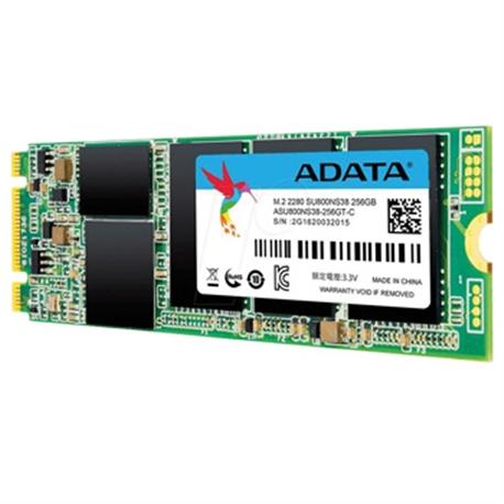 ADATA M.2 SU800 256GB SATA3 - 1101604