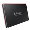 BLUERAY SSD M.2 PCIE X4 2280 M12S 256GB - 1100083