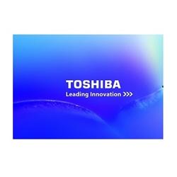 "Toshiba Disco Interno 3.5"" 500GB P300 - 1101032"